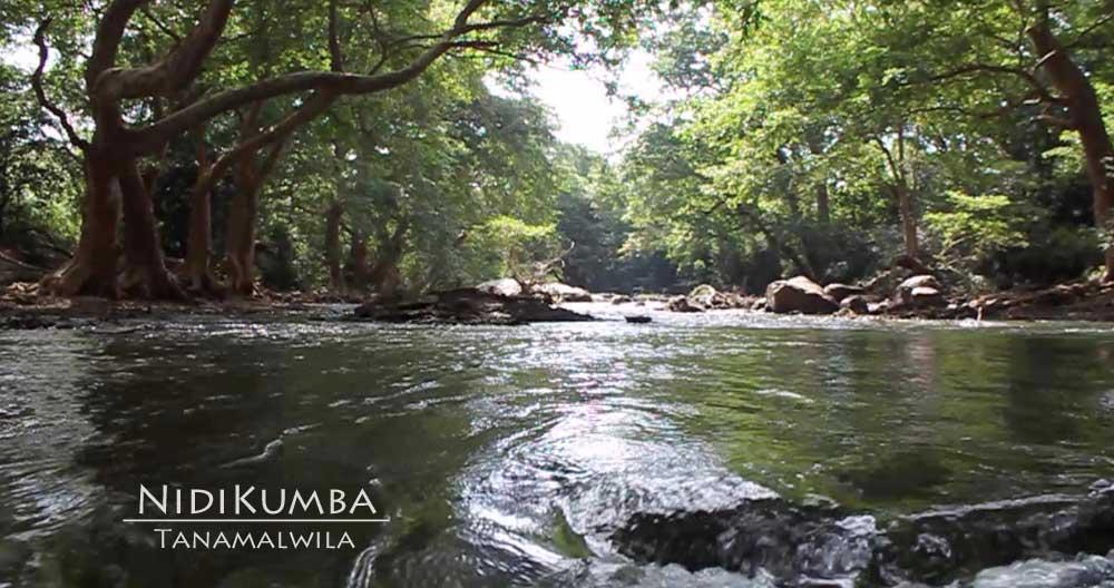 Nidi Kumba  Tanamalwila Hotels in Sri Lanka Beachs Yala